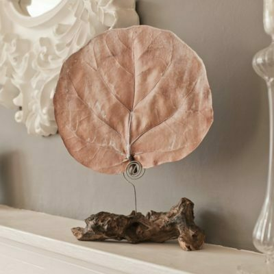 PAIRFUM fragranced botanical leaf diffuser natural driftwood stand