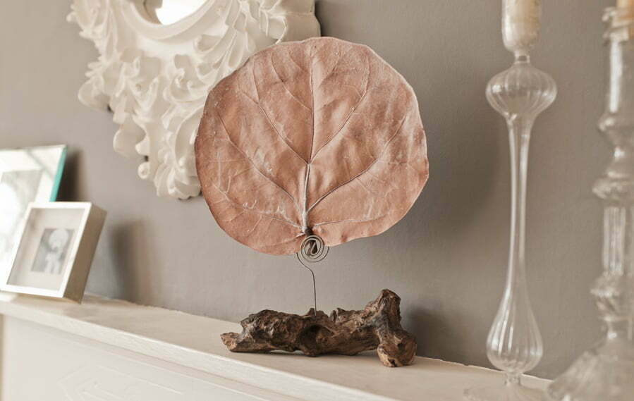 PAIRFUM fragranced botanical leaf diffuser natural driftwood stand. Perfume or Scent Layering in your Home.