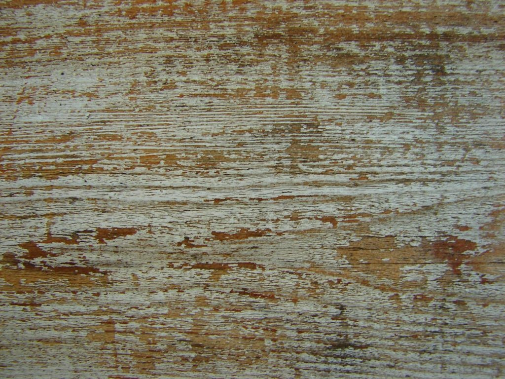 cedar and amber wood