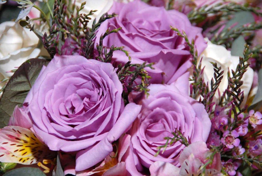 PAIRFUM roses herb home fragrance perfume