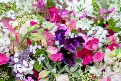 Pairfum-British-Flowers-Week-reed-diffuser-Orlaya-grandiflora-bouquet