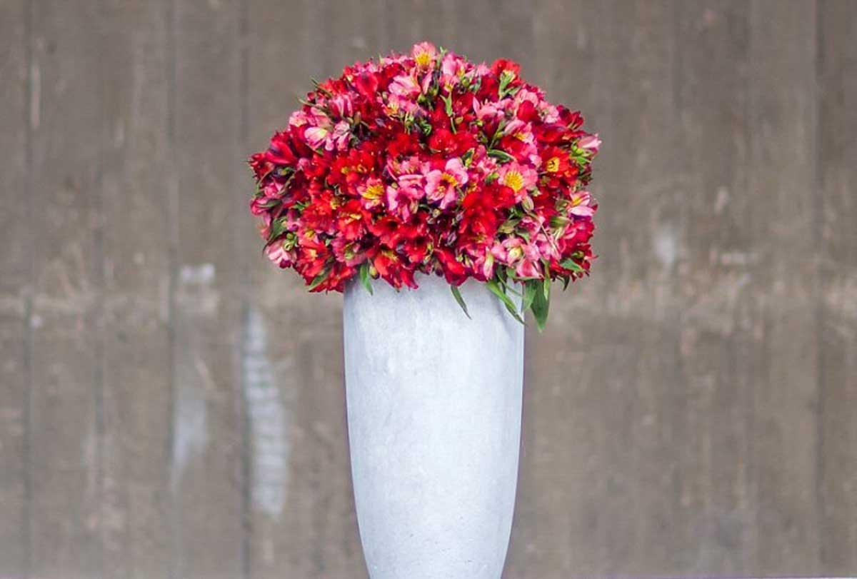 Pairfum-Perfume-Candle-Alstroemeria-Red-Urn-Flower