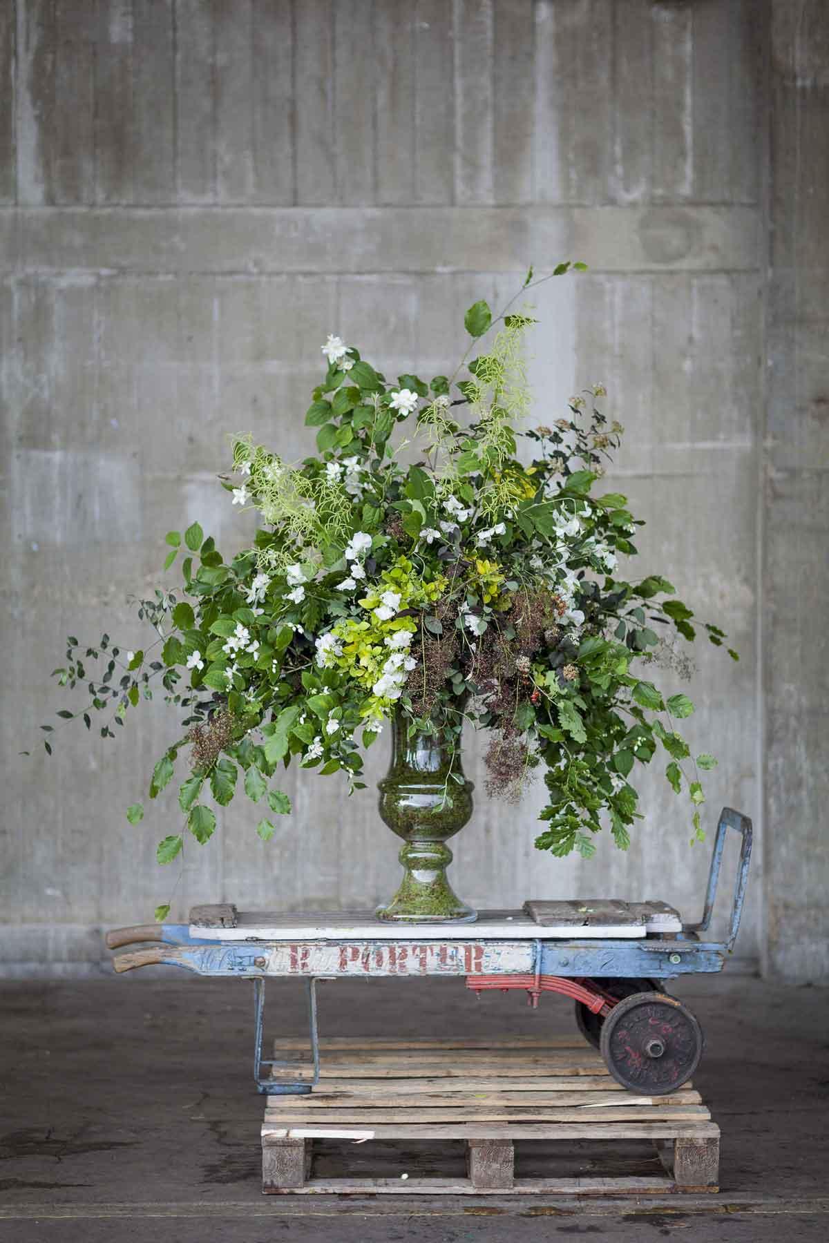 British Flower Week - Day Four - Foliage