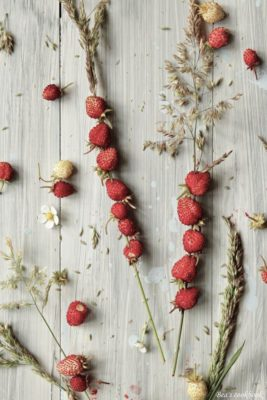 Scandinavian Picnic Midsummer Wild Strawberries