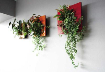 fresh ideas for decorating with plants frame