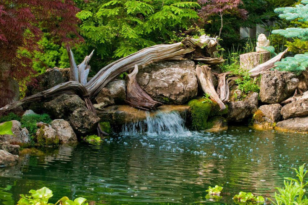 Relaxing garden ponds for Garden pool facebook