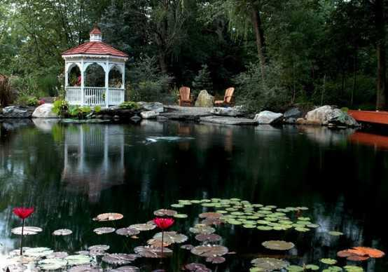 Relaxing Garden Ponds