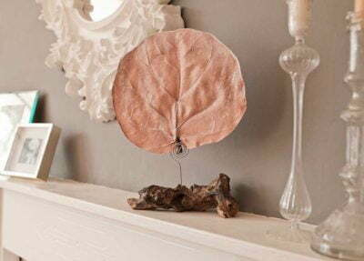 Perfume Art Pairfum Lifestyle Living Room Canopy