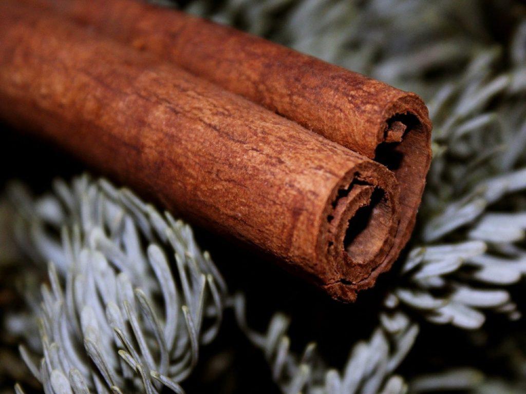 Cinnamon Reed Diffuser Stick