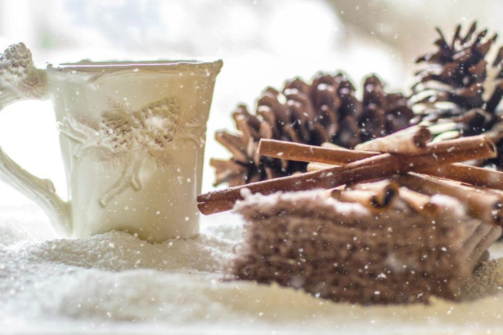 Pine Cone Cinnamon Reed Diffuser Snow