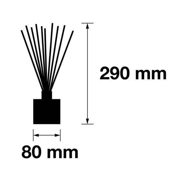 Pairfum Infographic Large Reed Diffuser 200 Ml Size