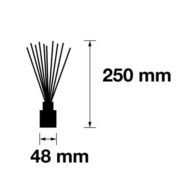 Pairfum Infographic Reed Diffuser Cube 50 Ml Size
