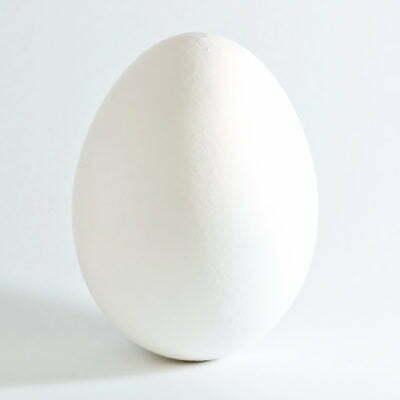 Egg Bald 1