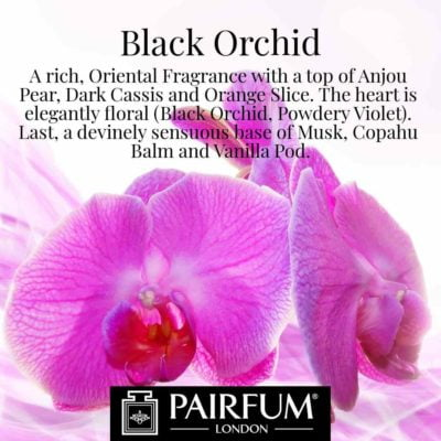 Black Orchid Pairfum London Anjou Pear