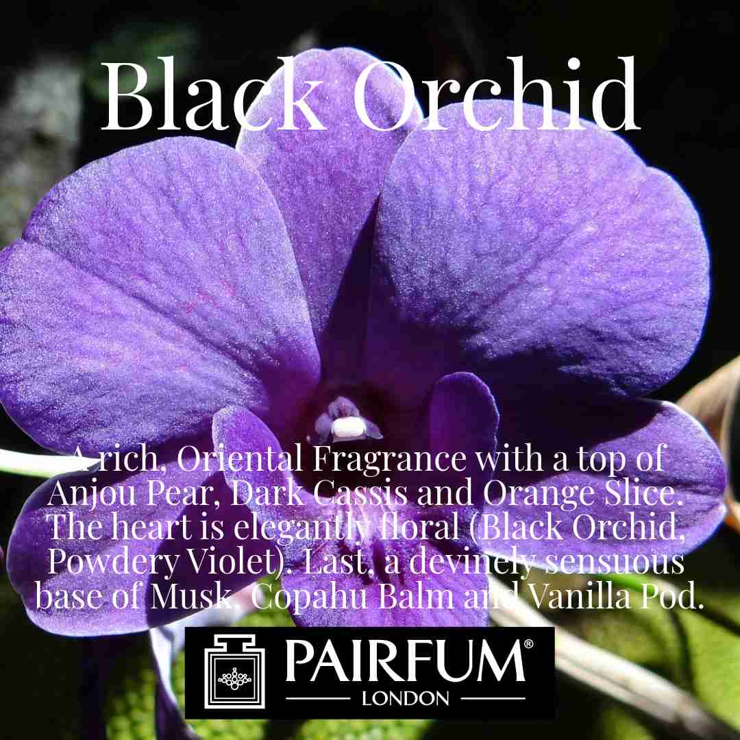 Black Orchid Pairfum London Violet Musk
