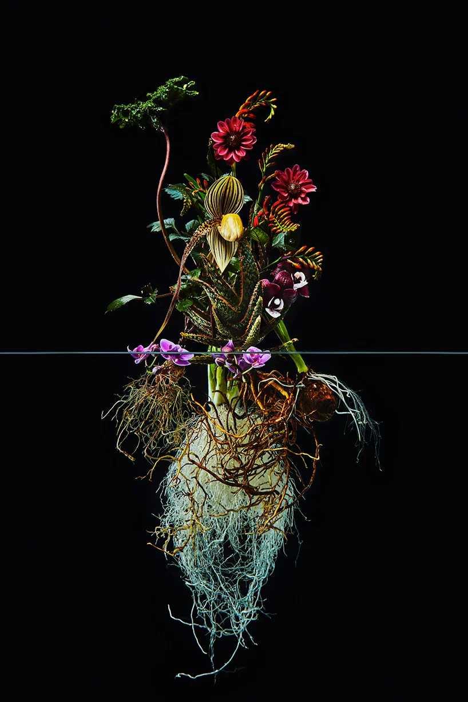 Pairfum London Azuma Makoto Undersurface Flower Root Fragrance 05