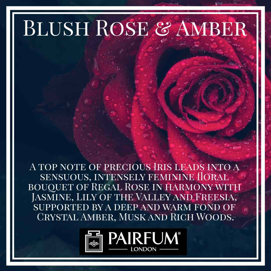 Blush Rose Amber Pairfum London Amber