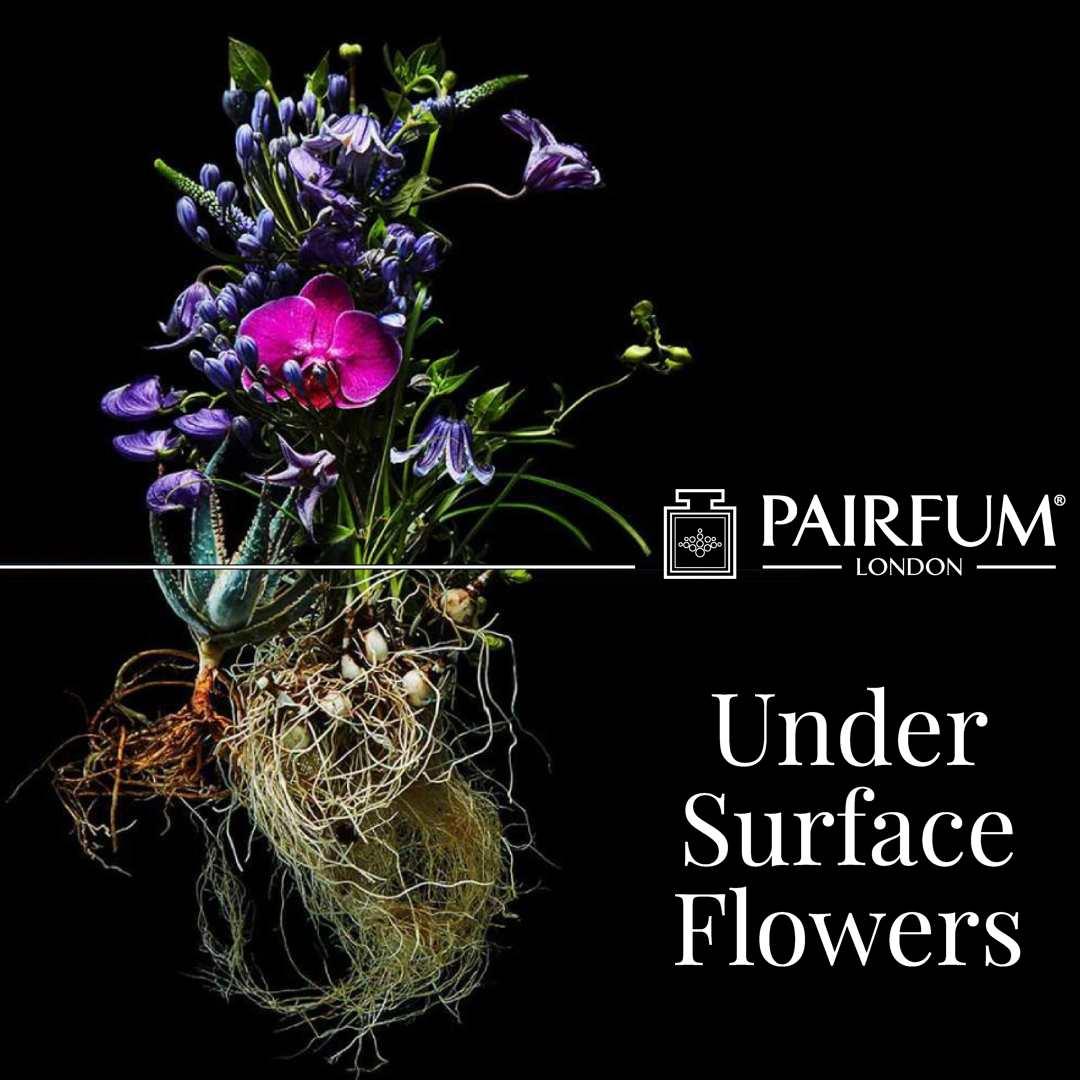 Pairfum London Azuma Makoto Undersurface Flower Root Fragrance