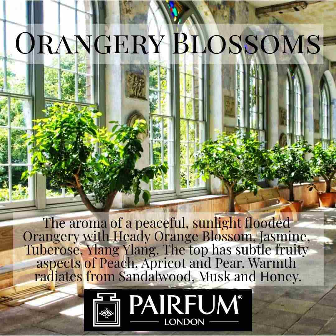 Pairfum London Orangery Blossoms