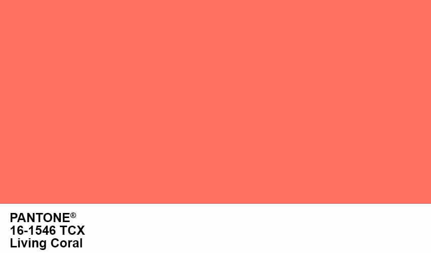 Pairfum Pantone Living Coral Colour Patch Year 2019