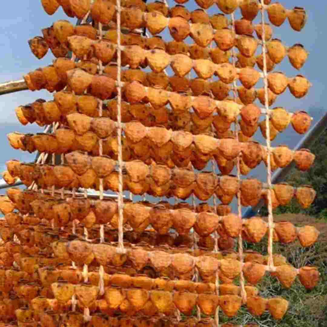 Persimmon Drying Season Japan Christo New York Fragrance 8