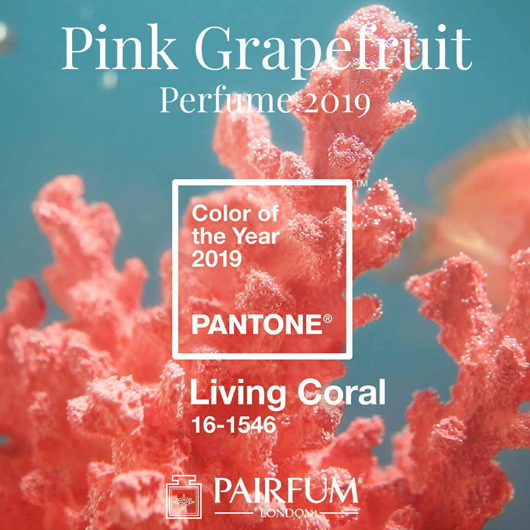 Pantone Color Year 2019 Living Coral Pink Grapefruit Perfume Pairfum