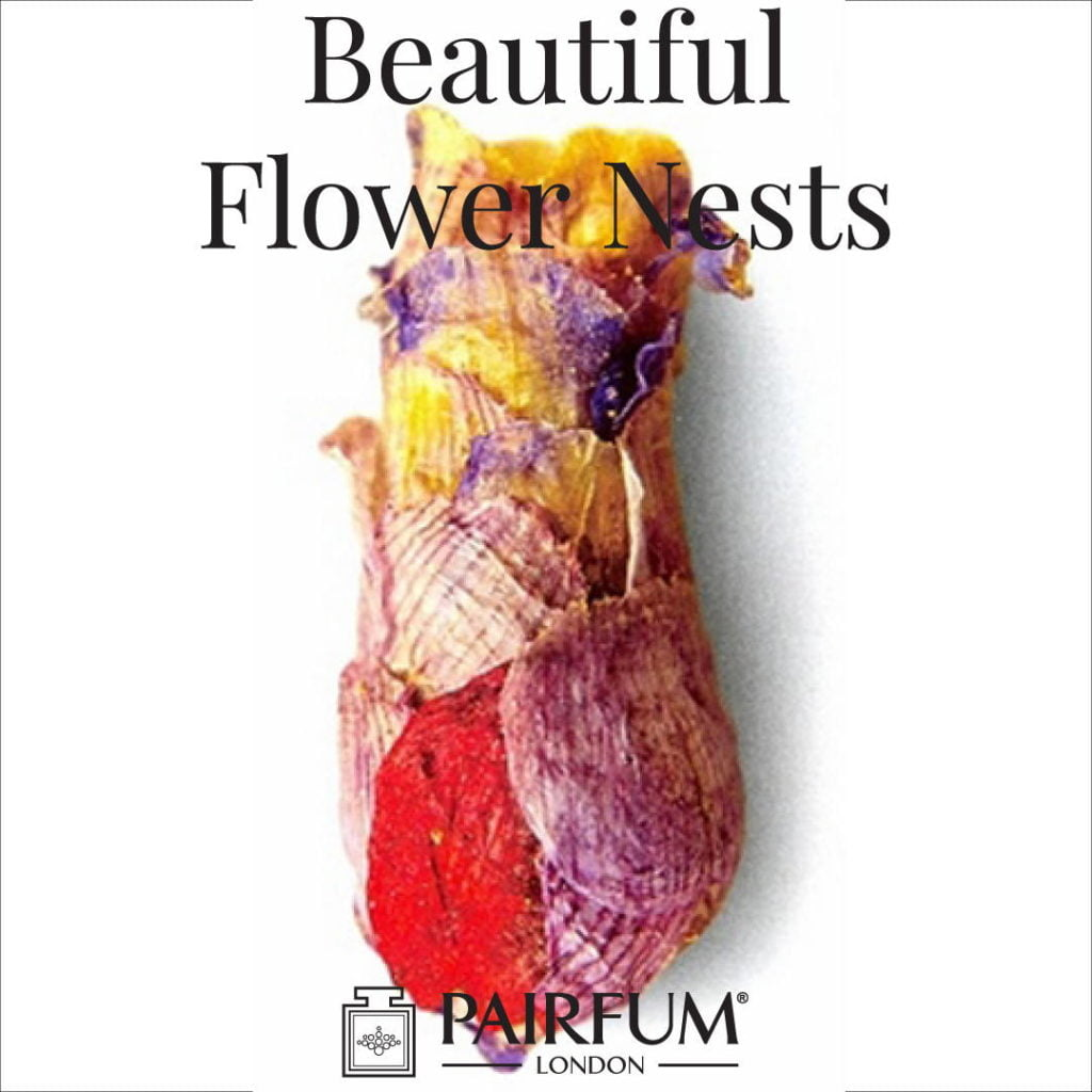 Beautiful Flower Nests Petal Special Bee Larvae Pairfum 16