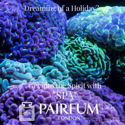 Dream Holiday Spirit Spa Dive Coral