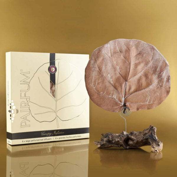 Pairfum Canopy Infusion Diffuser Extended Gold Fragrance