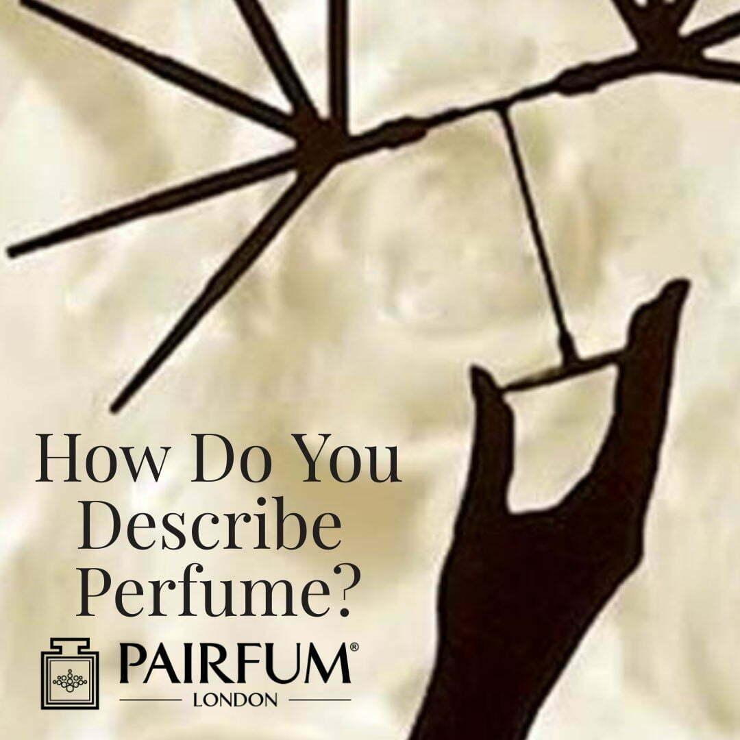 How Do You Describe Perfumery