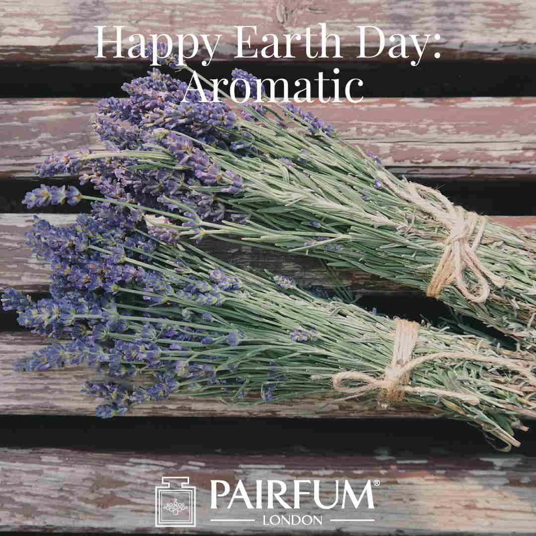 Happy Earth Day Lavender Aromaticl Scent