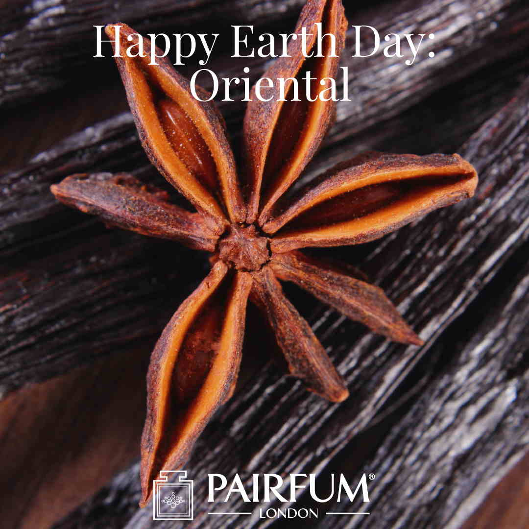 Happy Earth Day Vanilla Anise Oriental Scent