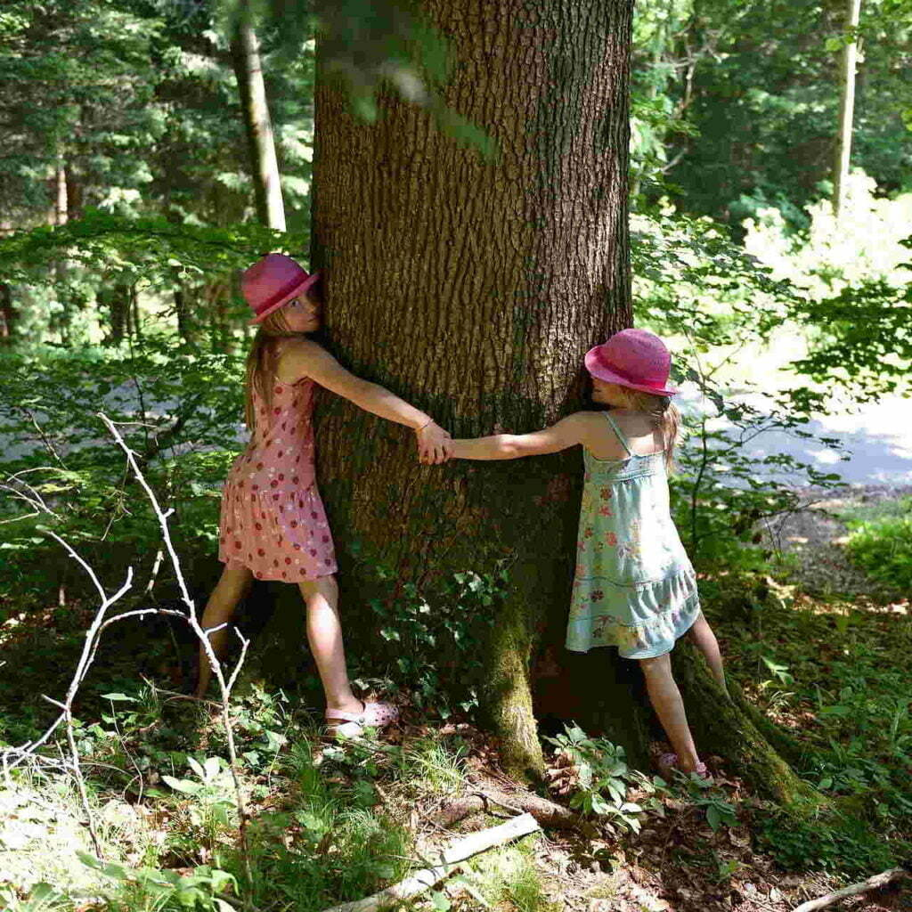 Kates Garden Tree Hugging By Children