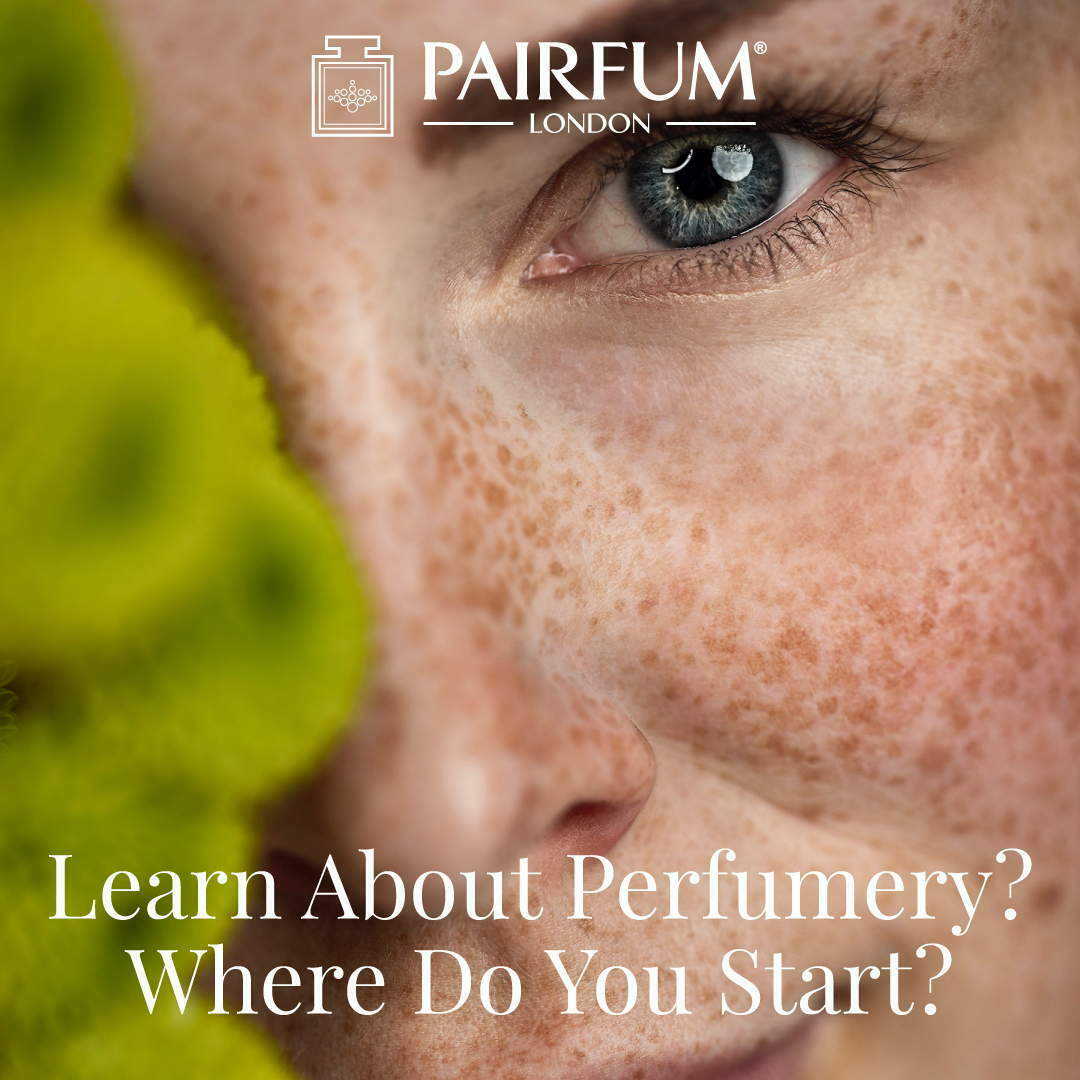 Learn Perfumery Where You Start Pairfum London