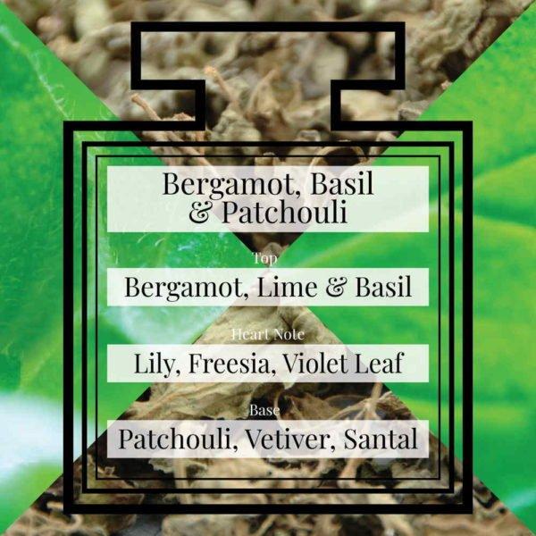 Pairfum Fragrance Bergamot Basil Patchouli Triangle