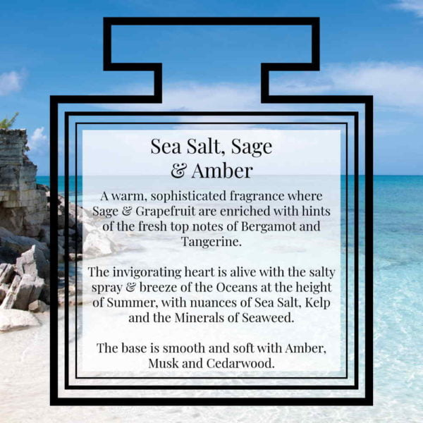 Pairfum Fragrance Sea Salt Sage Amber Description