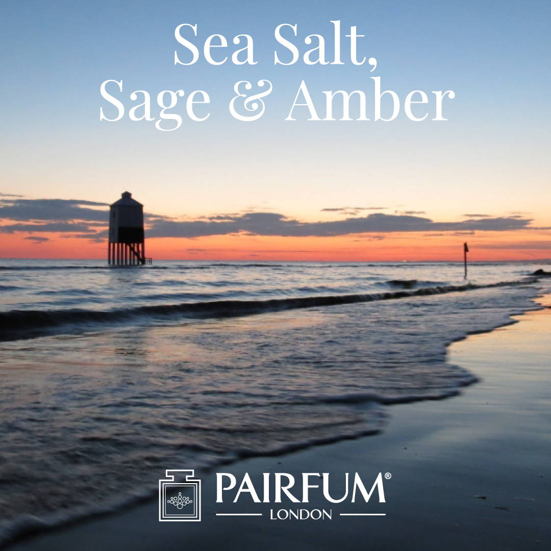 Fragrance Sea Salt Sage Amber Sex On The Beach