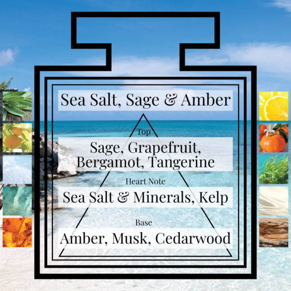 Pairfum Fragrance Sea Salt Sage Amber Triangle Ingredients