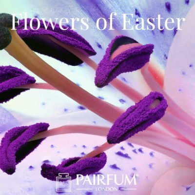 Pairfum London Perfume Flowers Of Easter Lily