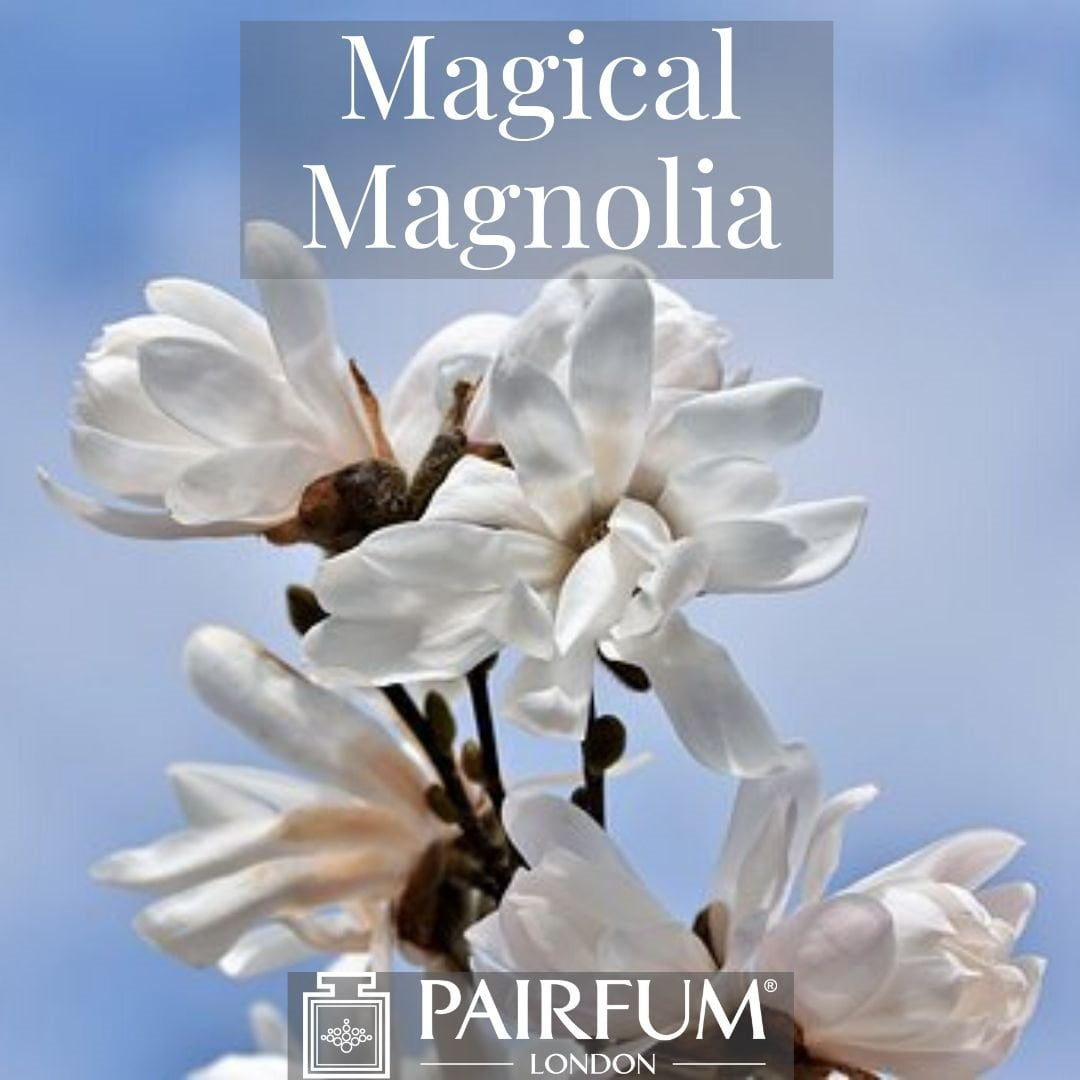 INSTAGRAM MAGICAL MAGNOLIA