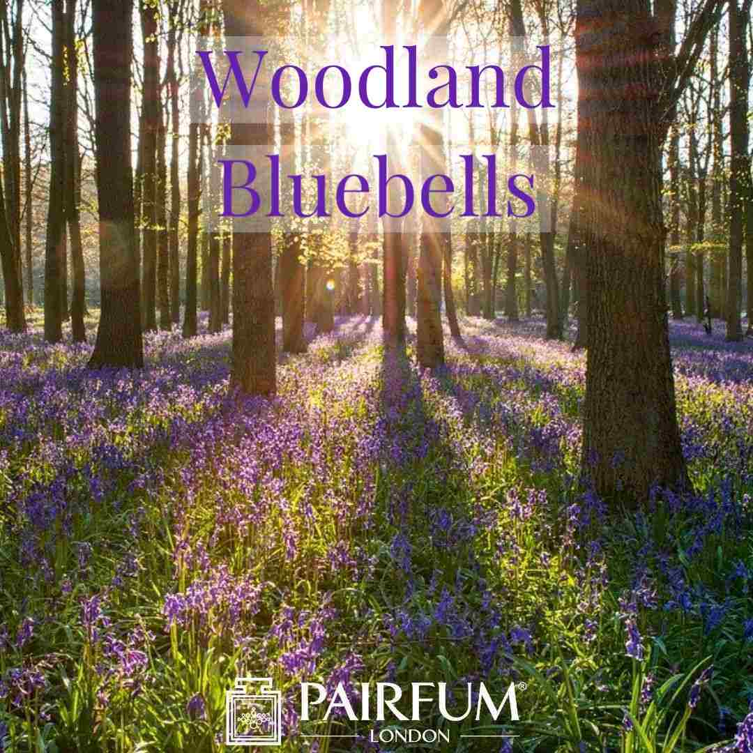 Bluebell Wood Fragrance Pairfum London UK