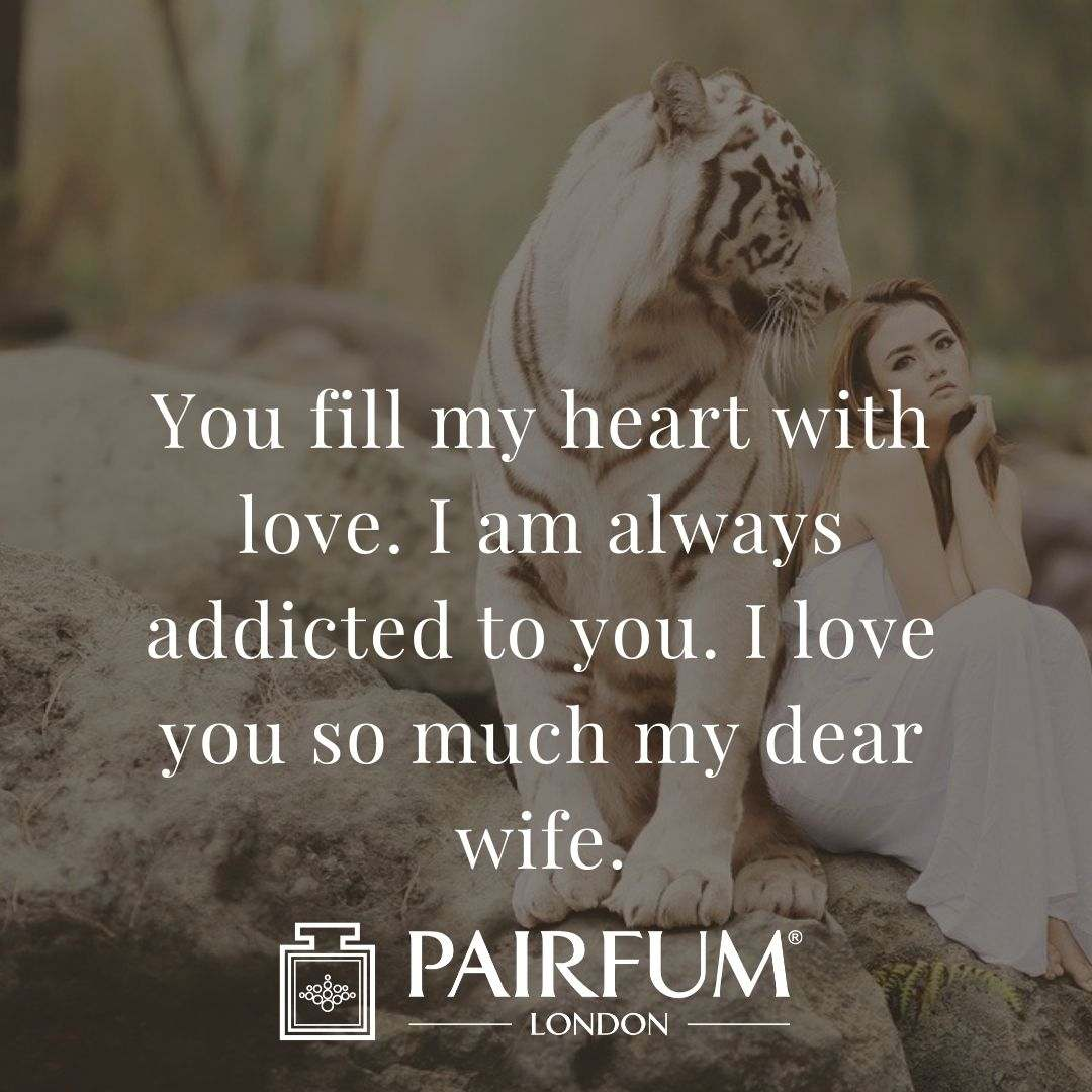 Wife Love Quote