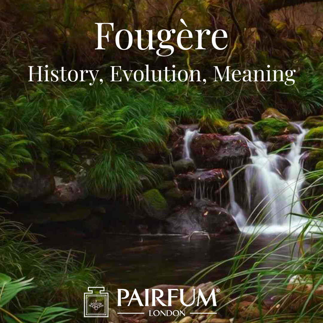 Fern Fougere Perfume Evolution Meaning History