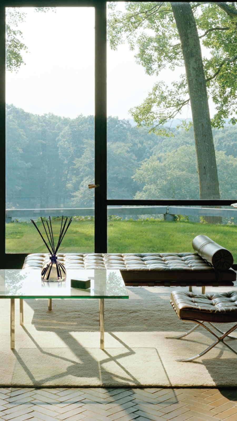 Lifestyle Natural Perfume Livingroom Large Reed Diffuser 9 16