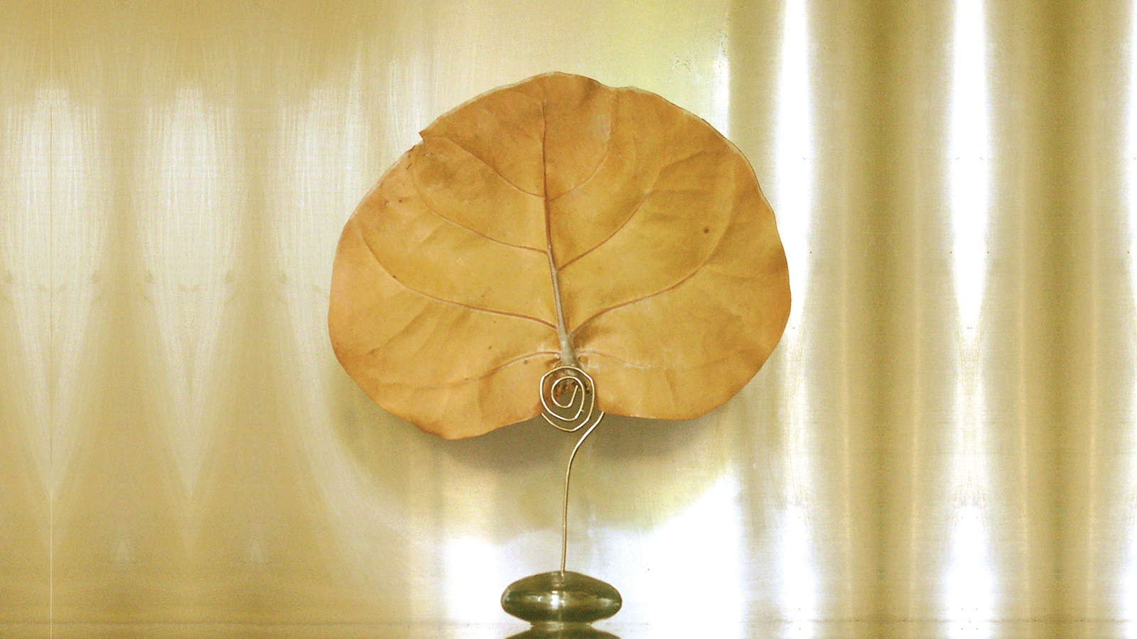 Natural Canopy Infusion Diffuser Glass Orb Stand 16 9