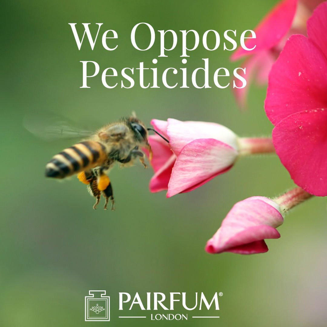 Pairfum London Opposes Pesticides Killing Bees Pollinator 1 1