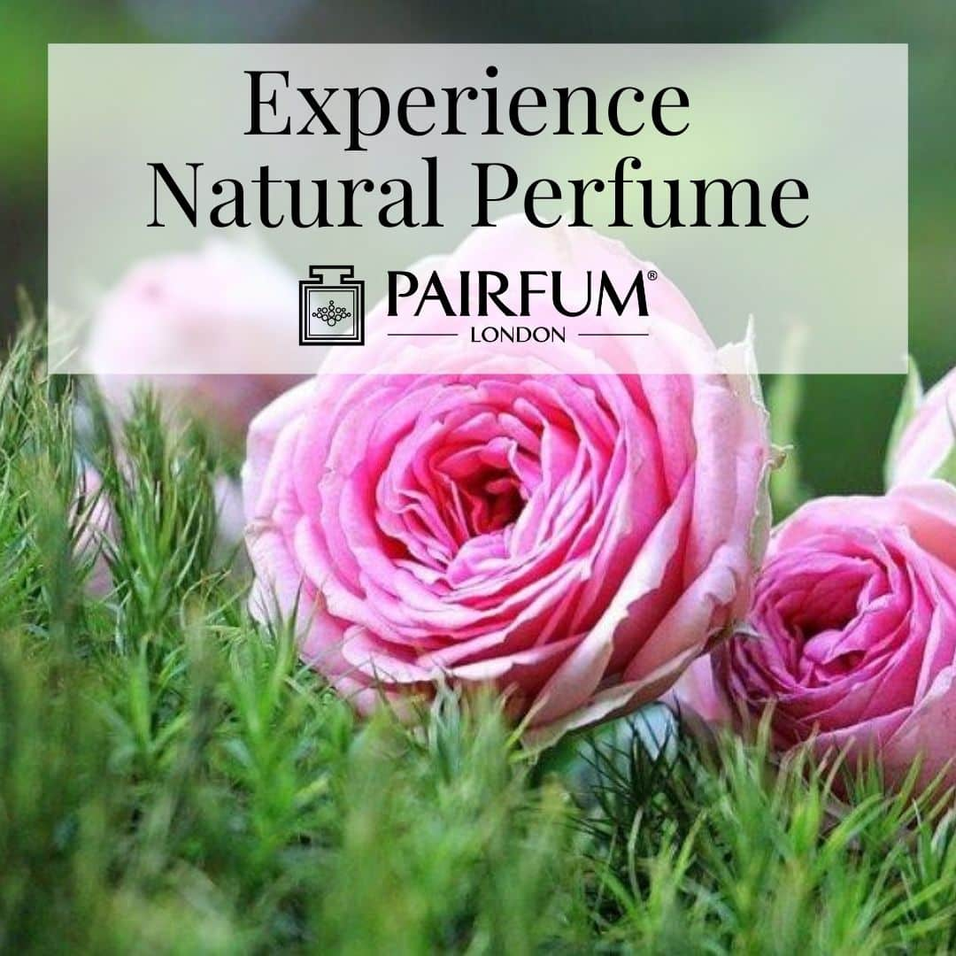 Experience Natural Perfume