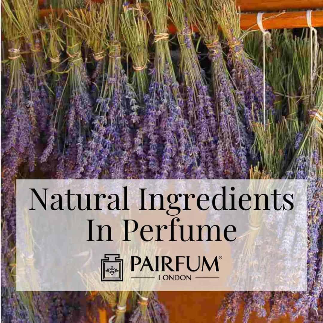Natural Ingredients In Perfume