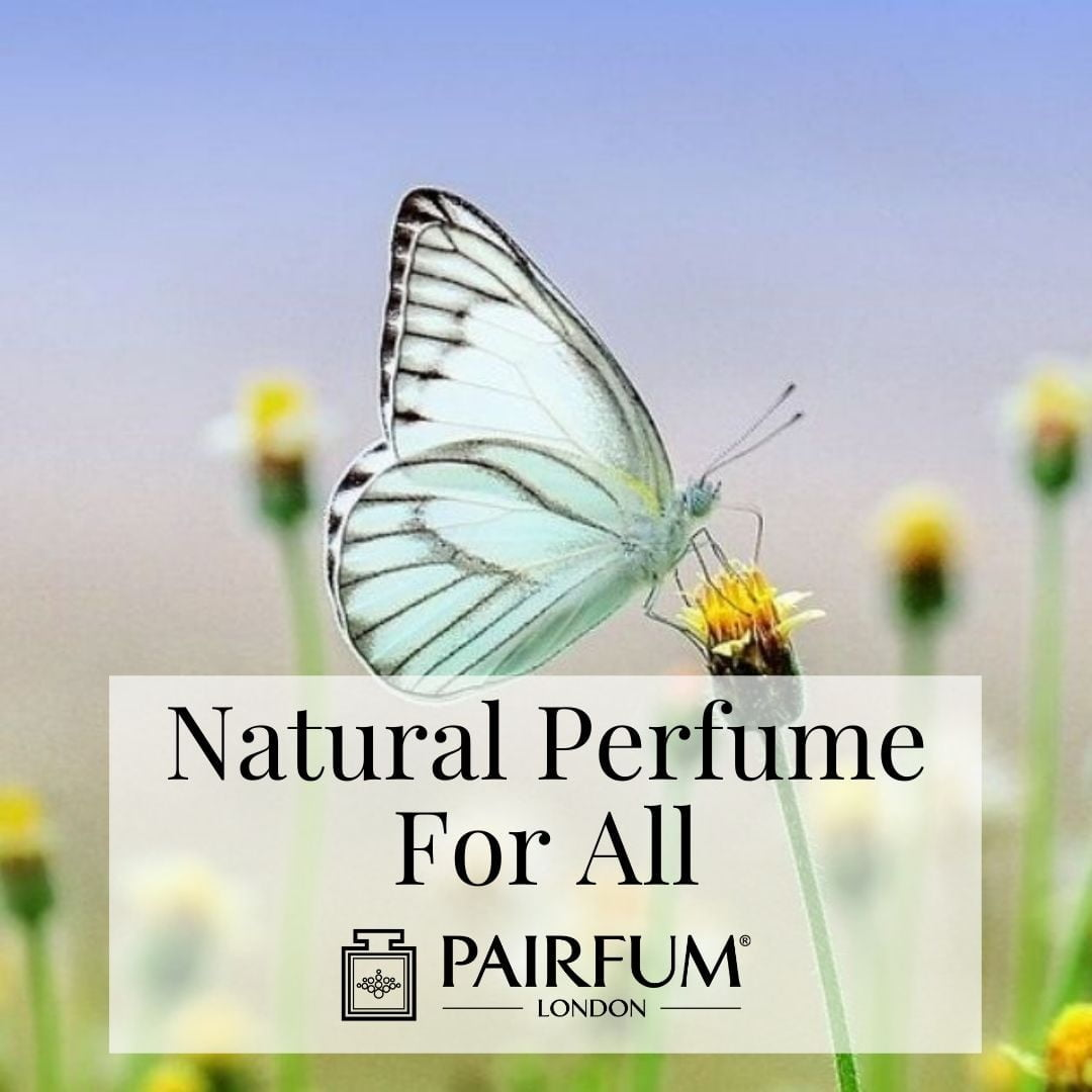 Natural Perfume For All