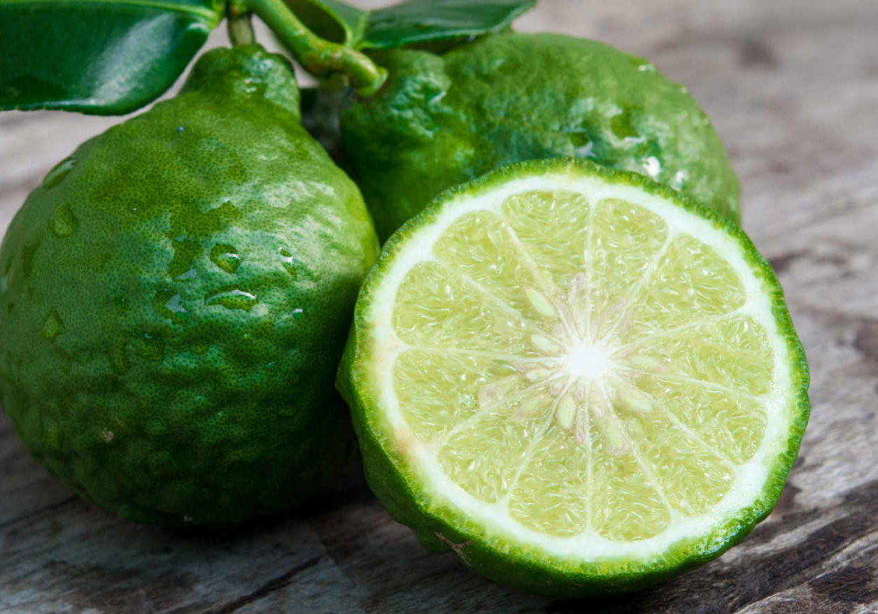Citrus Fruit Bergamot Essential Oil Fragrance 1